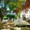 Casa de Rechita
